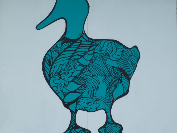 The recognizable teal color and Odd Duck logo were