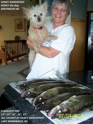 Sandy Goodspeed of Greenbush, along with her dog Honey, are pictured with six nice Winnebago walleye taken by her and her husband, Don Nichels, on the Fourth of July in less then two hours.