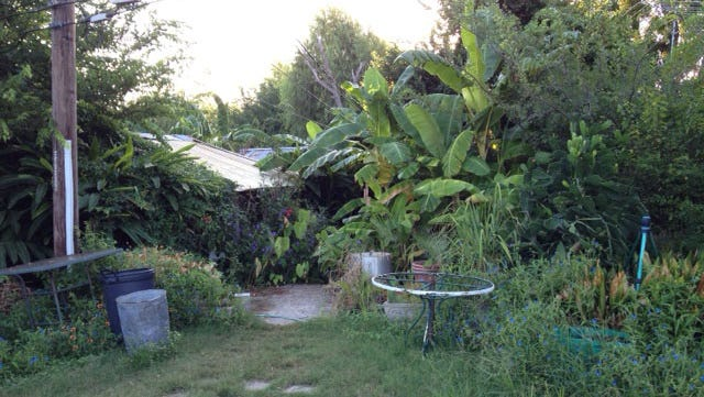 Beyond the curtain of foliage is the home of Gilbert Gauthe. He now lives as a registered sex offender in San Leon, Texas.