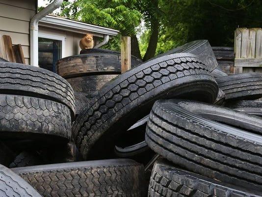 House of Tires w cat.JPG