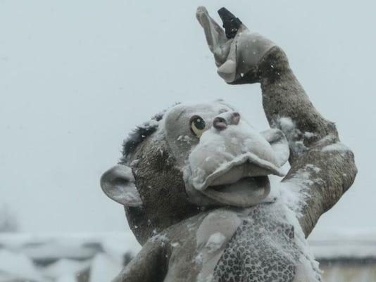 blizzard monkey.JPG