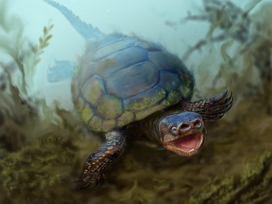 Extinct Pig-Snouted Turtle