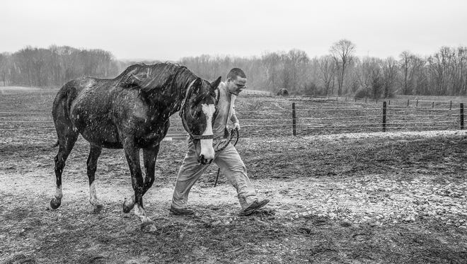 Inmate Matthew Ziliak leads a horse into the barn for feeding and grooming on a rainy Monday, March 6, 2017. Seven days a week, except for days with heavy fog or other harsh weather situations, inmates are picked up at the Putnamville Correctional Facility at 8 a.m. They perform their duties at the Thoroughbred Retirement Foundation barn and return to the prison at 2 p.m.