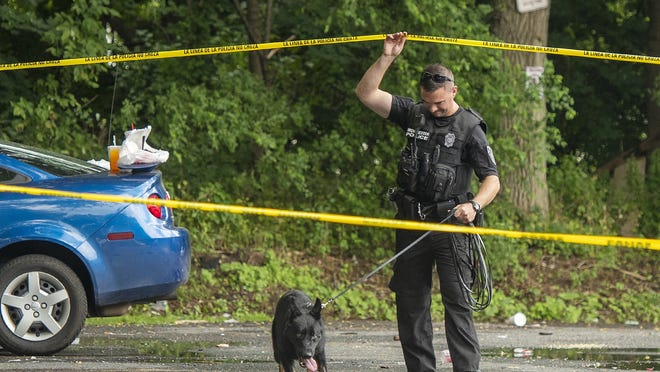 A Worcester Police officer and his K9 partner work a crime scene, near a car that may have been involved in an apparent shooting last month in Worcester.