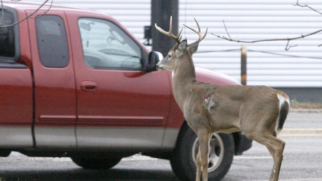 The Ohio Department of Natural Resources says hunters took fewer deer this year during muzzleloader season, which ran Jan. 2 through Tuesday.