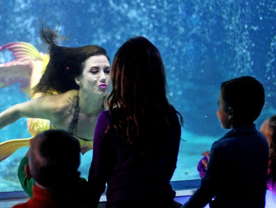 A mermaid greets guests at the Adventure Aquarium.