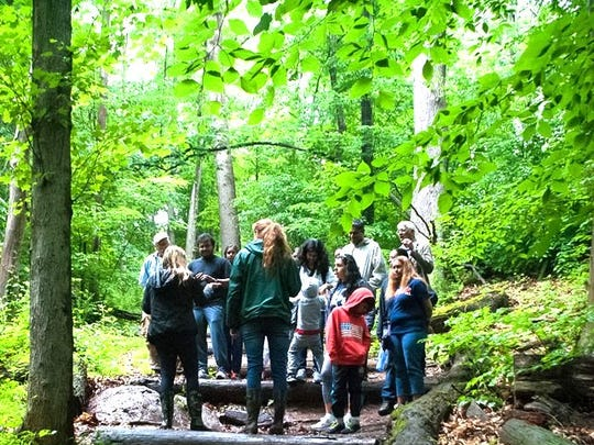 In celebration of the 50th anniversary of National Trails Day, on Saturday, June 2, Union County's Trailside Nature & Science Center will host four different guided hikes and an Adopt-a-Trail volunteer activity at the Watchung Reservation, along with special programs throughout the day for all ages.