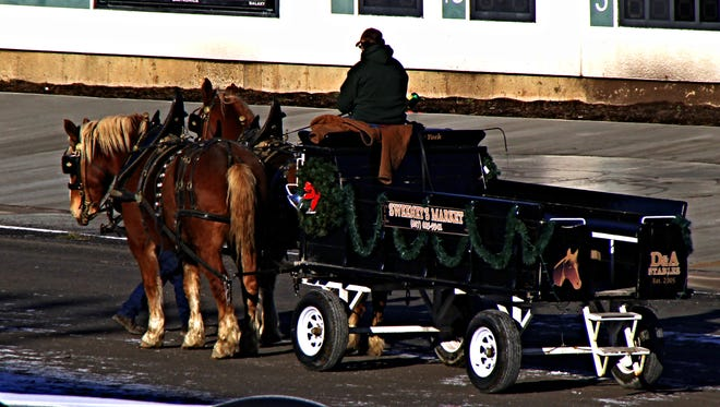 James P. Malone Sr.  A horse-drawn wagon during Winterfest at Tioga Downs in January.