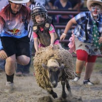 Addy Seder, 2, smiles before reaching out to touch a sheep at the Augusta County Fair's petting zoo on Tuesday, August 4, 2015.