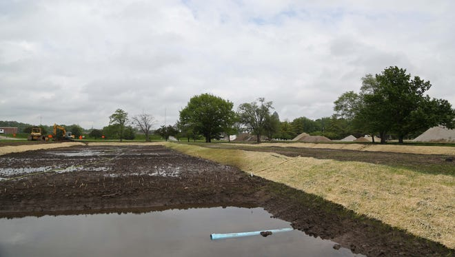 A soon-to-be wetland area located in Water Works Park on Wednesday, May 11, 2016. DMWW created the wetland, containing 10,000 cattails and 10,000 bulrush plants to experiment with how the wetland area can remove nitrates from Raccoon River water before it is sent to the treatment plant. The area will be filled with water once the plants become established.