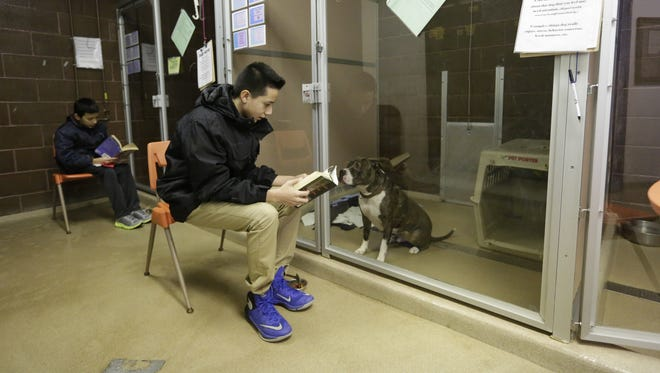 Oscar Bravo, an eighth-grader at South Park Middle School, reads Thursday to Duncan, a resident at the Oshkosh Area Humane Society. The students have been reading to the dogs at the shelter for some time.