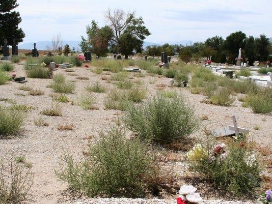 -Weeds at Cemetery 1.jpg_20140825.jpg