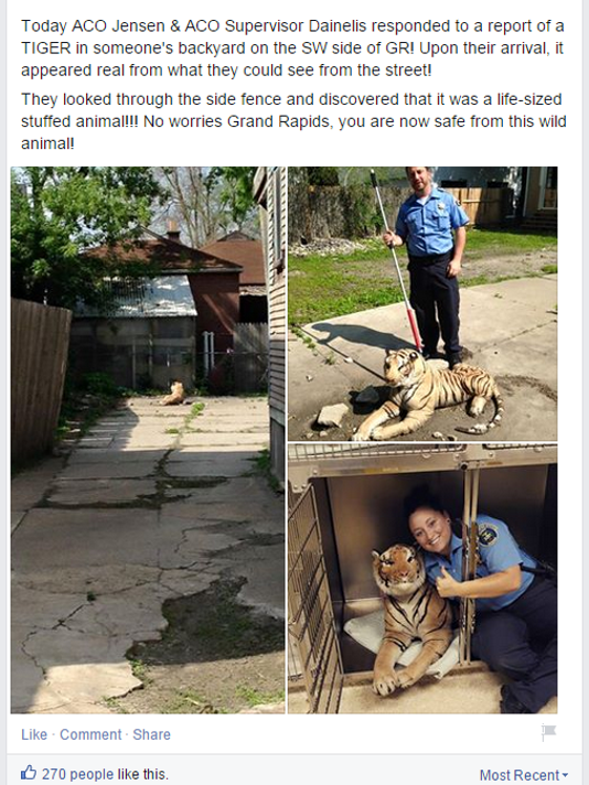 Toy tiger in G.R. backyard prompts call to animal control on