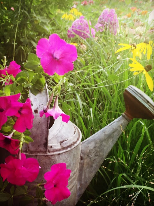garden watering