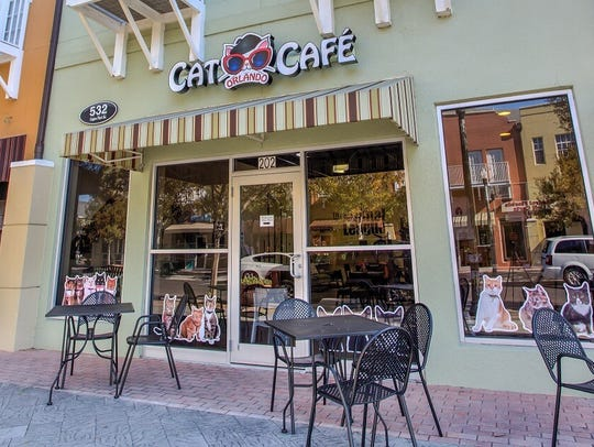 Exterior of Cat Cafe