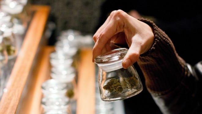 A customer holds a sample bud of marijuana at Amazon Organics, a pot dispensary in Eugene, Ore., on Thursday, Oct. 1, 2015.