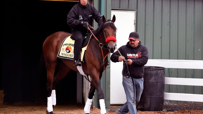 Nyquist leaves the barn Wednesday to train at Pimlico.