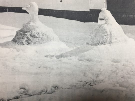 Teresa Gipson's two year old son Bud was fond of Big Bird and Cookie Monster in March 1984, so she took advantage of the snowfall to make snow models of the two characters.