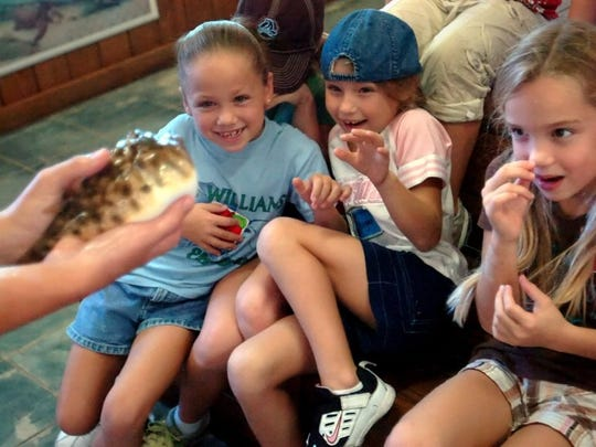 Family Fun Day is Saturday at the Environmental Studies Council in Jensen Beach.