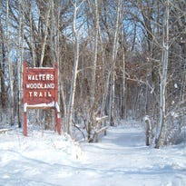 Walters Woodland Trail, Marsh Haven Nature Center.