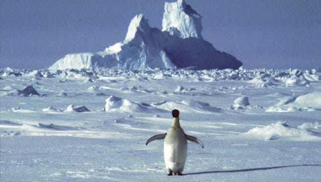 A lone penguin traverses an expanse of ice in Antarctica.