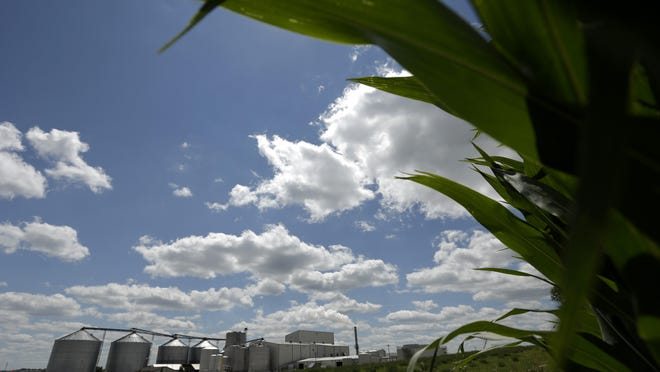 A plant that produces ethanol, the fuel produced from corn, next to a cornfield near Coon Rapids.