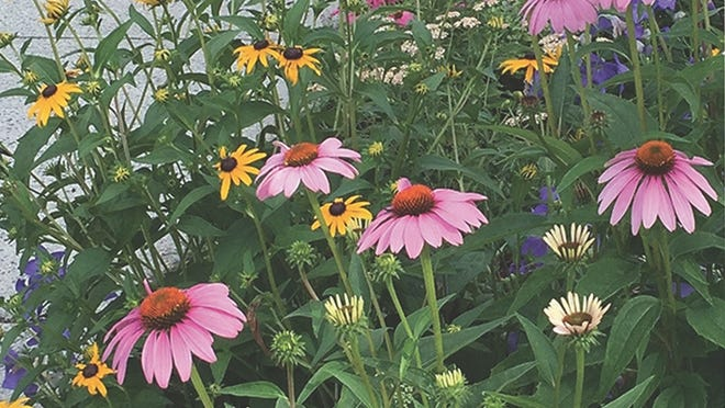 The West Concord Green Thumbs invite citizens to take a stroll through the five gardens they plant and maintain June 27.