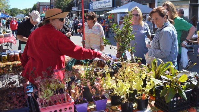 A scene from Oconto Harvest Fest in 2017. This year's event, again on Main Street, is set for Saturday, Sept. 29. Craft, produce and other vendors are being sought for the annual event, sponsored by the Oconto Area Chamber of Commerce.