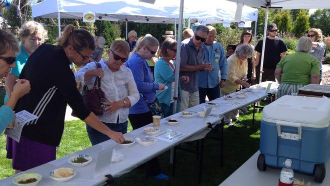 Visitors queue up to sample pesto entrees in the Pesto Festo competition Saturday.