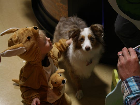 Sawyer Rodriguez, 1, pets Bleu, a 1-year-old emotional support dog during the Discovery Center's annual Halloween Party in 2016.