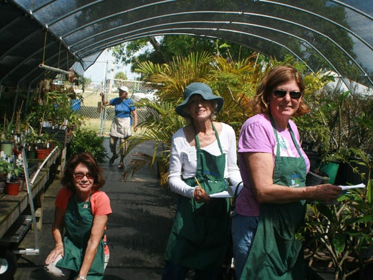 Gail Rounds, left, Barbara Schmucker and Wendy Womble at the Master Gardeners' shade house preparing for a plant sale.