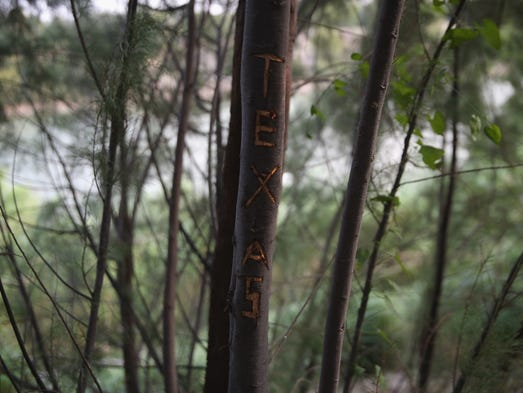 A tree carving for the state of Texas stands near the bank of the Rio Grande River near Mission, Texas. Tens of thousands of immigrants, many of them minors, have crossed illegally into the United States this year, causing a humanitarian crisis on the U.S.-Mexico border.