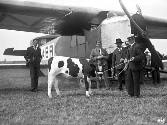 In 1924 KLM Royal Dutch Airlines flew Nico the bull