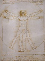 "A picture shows the ""Vitruvian Man,"" a drawing by Leonardo"
