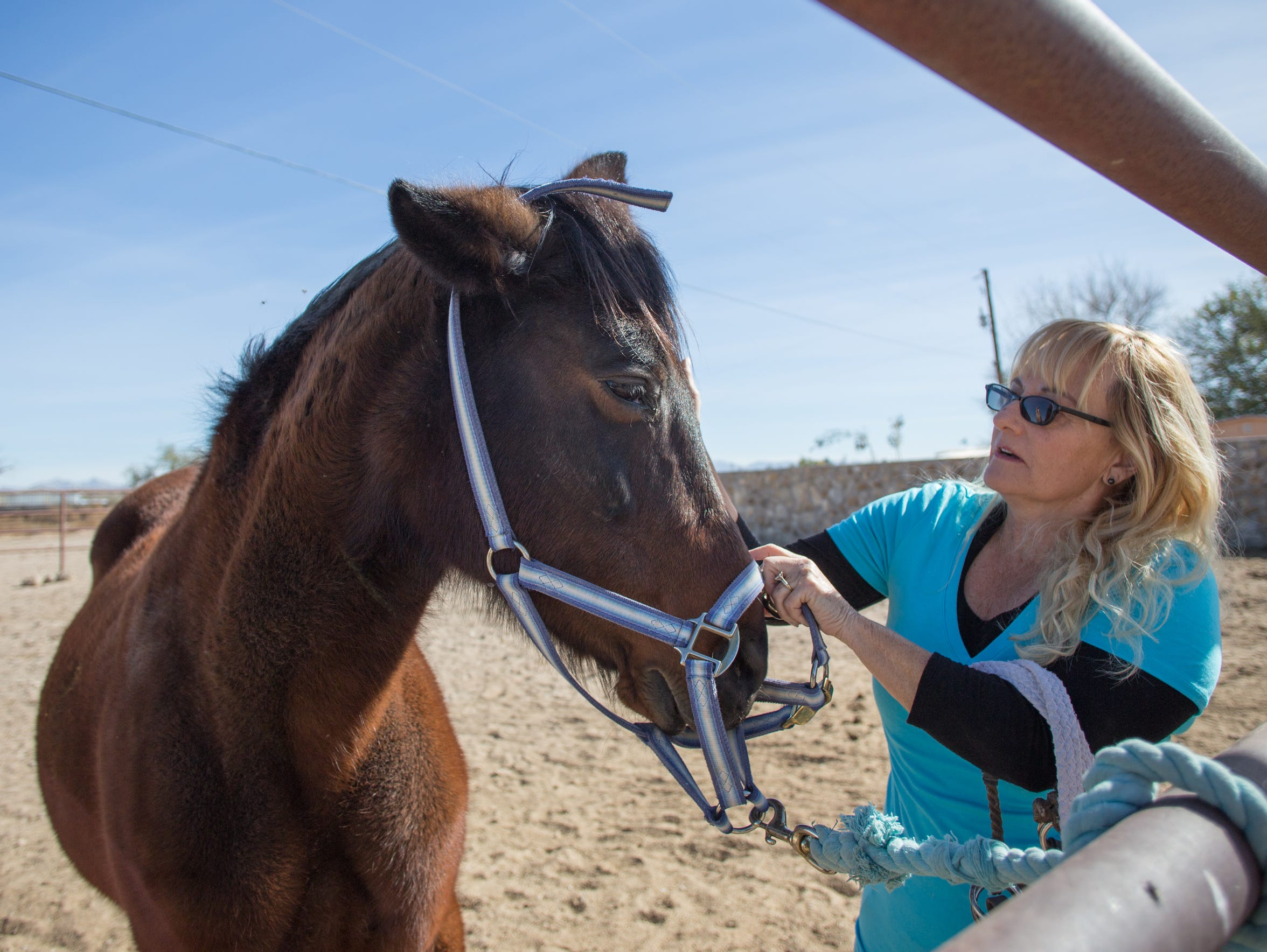 Horse specialist Dianna Yielding bonds with Sara the horse at Equine Assisted Programs of Southern New Mexico, Monday November 20.