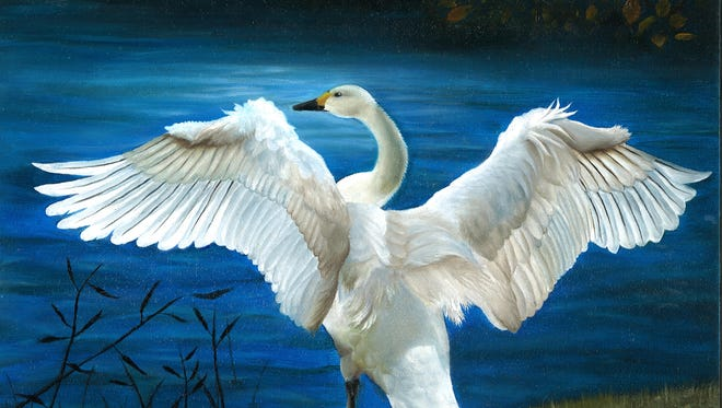 A tundra swan portrait by Megan Zou of Miami took Florida's best of show.