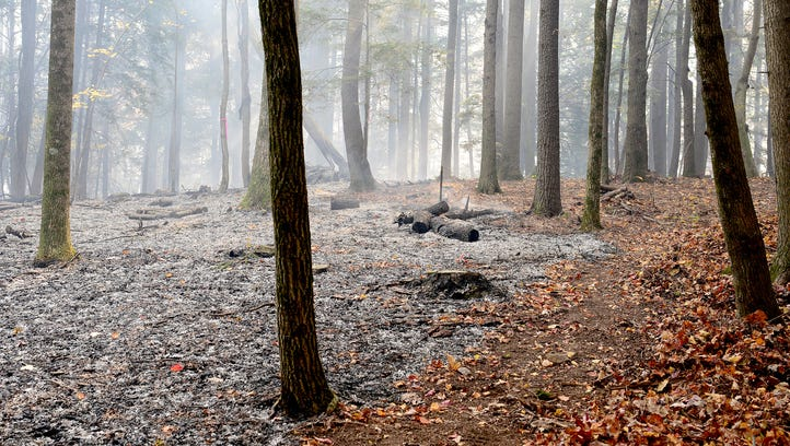 The ground is charred and covered in ash where firefighters