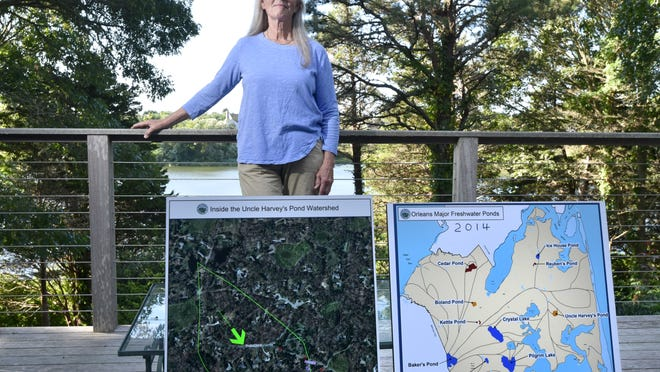 Betsy Furtney displays maps of Uncle Harvey's Pond in Orleans, which her house overlooks. She is discouraged by the lack of progress in addressing the toxic algal blooms in the pond and has collected signatures from neighbors to press the town to take action.