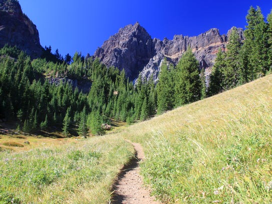 Upper Canyon Creek Meadows features views of Three