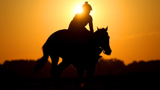 Jun 7, 2016; Elmont, NY, USA; A horse and exercise rider trains on the main track at sunrise in preparation for the 148th running of the Belmont Stakes at Belmont Park. Mandatory Credit: Brad Penner-USA TODAY Sports