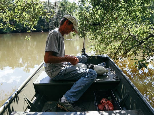 Vaughan prepares bait to be hung from a tree branch in Silver Lake Park to catch a nuissance alligator.