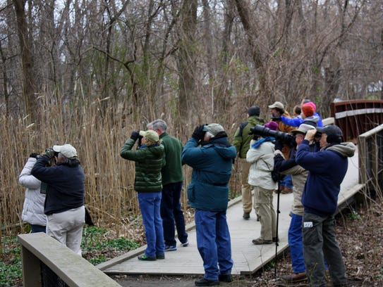 Birders on a guided walk at Teaneck Creek Conservancy