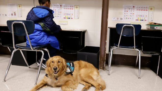 Jahlin Senegal studies as Roux, a therapy dog, stands by at J.W. Faulk Elementary in Lafayette Monday, March 13, 2017.