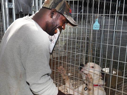 636254533721402563-St-Landry-Animal-Shelter-1.jpg