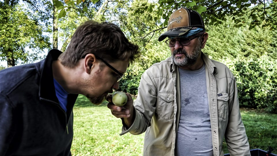 Josh McClary takes a whiff of pawpaw fruit grown in