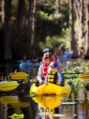 Paddlers in the Okefenokee.