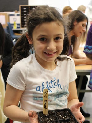 """First-grader Olivia Deibert shows off her flat of vegetable seeds for the """"Growing to Give"""" project."""