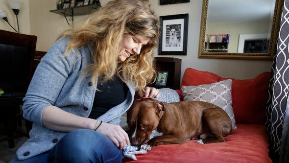 Emma Toth cares for George, a pit bull terrier who