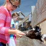 Private zoo offers hands on experience in Alto