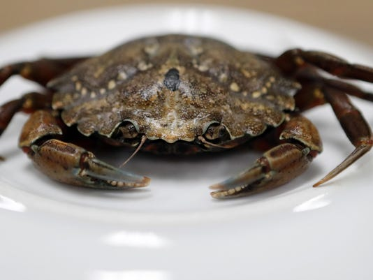 Angry Green Crabs